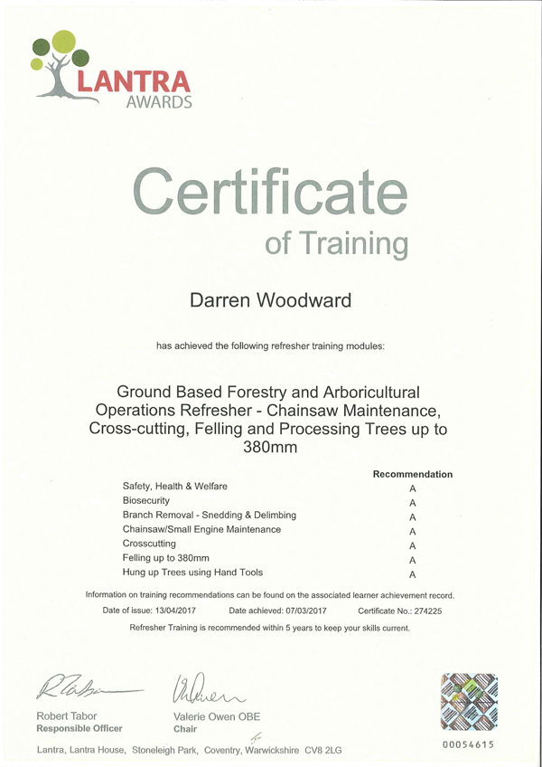 Chainsaw Certificate